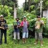 peringati-hari-menanam-pohon-ratusan-pegiat-lingkungan-lintas-komunitas-hijaukan-alas-simpenan