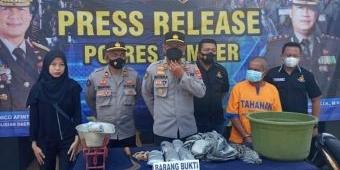 Pria Peracik Bahan Peledak di Jember Ditangkap Polisi
