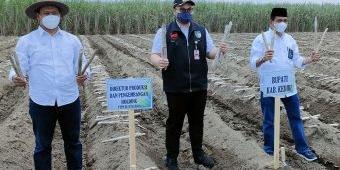 Bupati Kediri Apresiasi Program Makmur untuk Petani Tebu yang Dijalankan PTPN X