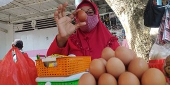 Jelang Maulid Nabi, Harga Telur Ayam Ras Merangkak Naik di Wilayah Ini