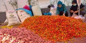 Bantu Petani, TP-PPK Sumenep Borong Cabai dan Bawang Merah