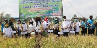 Biotani Gandeng Perempuan Tani HKTI Lakukan Panen Raya di Kepanjen Malang