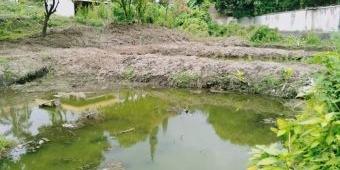 DLH Kota Batu Bangun Tiga Kolam Ramah Lingkungan untuk Budi Daya Ikan yang Hampir Punah