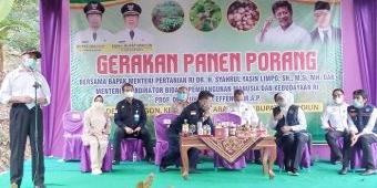 Varietas Paling Unggul di Indonesia, Porang Madiun Diapresiasi Mentan Syahrul Yasin Limpo